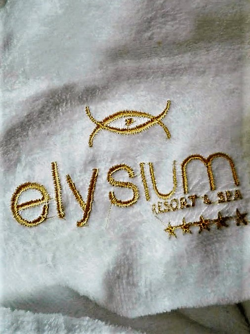 GL for Elysium2_revised2